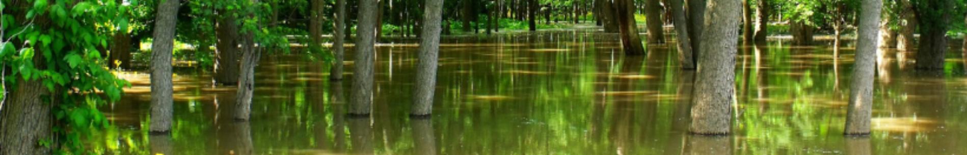 Bandeau Inondation ©hifijohn-pixabay