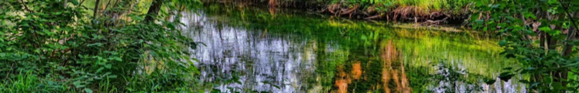 Bandeau eau ©Pixabay-Schwoaze