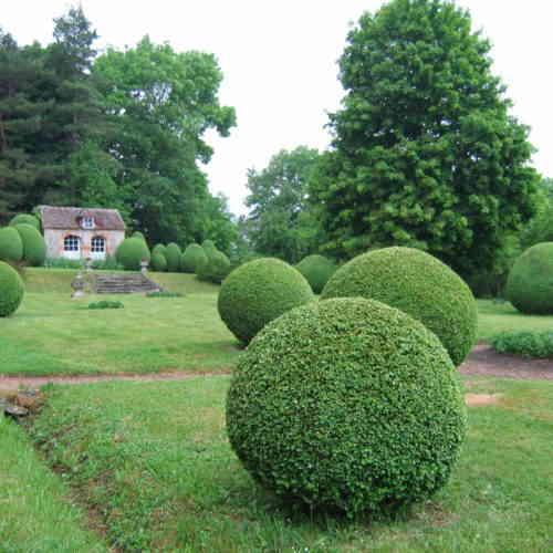 Jardin du Château La Gentilhommière à Lurcy-le-Bourg ©CCLB