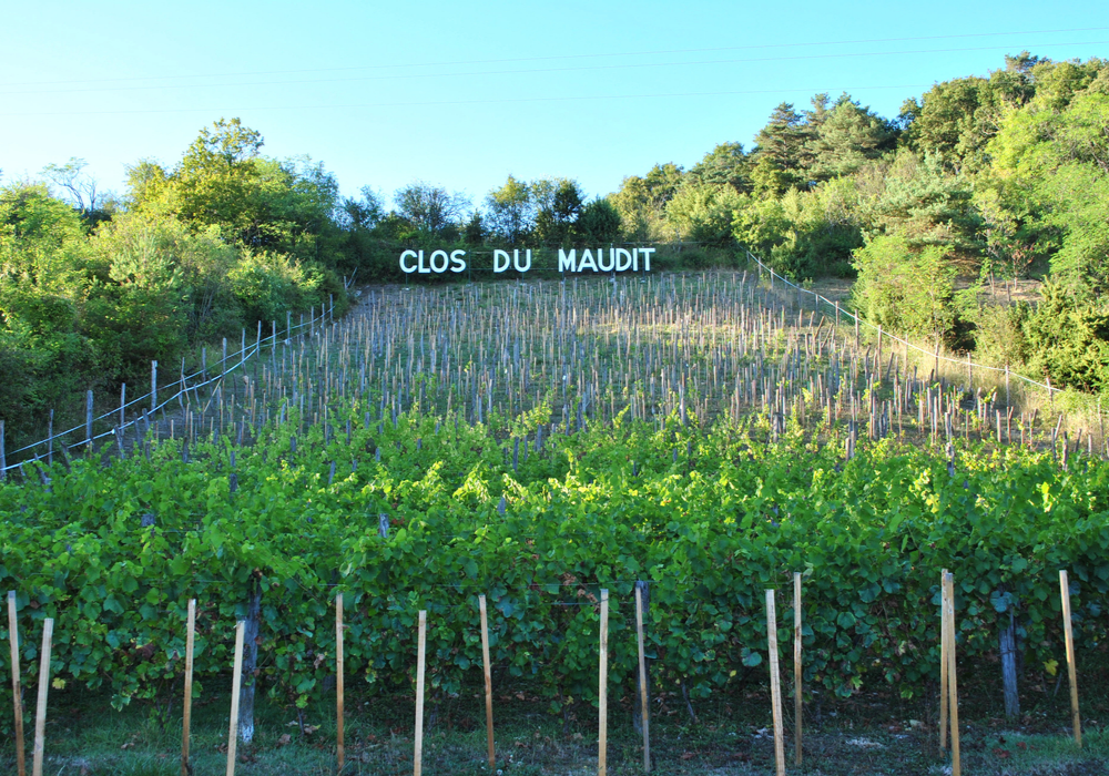 Vignoble Clos Maudit Chaulgnes ©OTLesBertranges