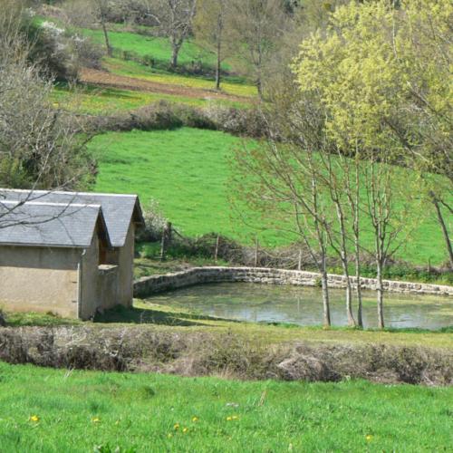 Montenoison @Commune de Montenoison