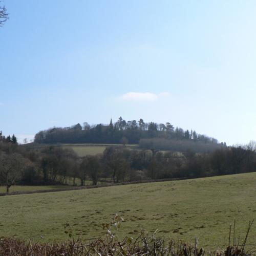 Vue de Montenoison @Commune de Montenoison